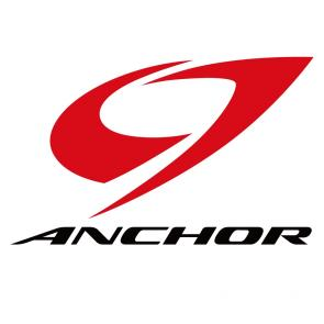 anchor-BRIDGESTONE